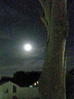 super_moon1611